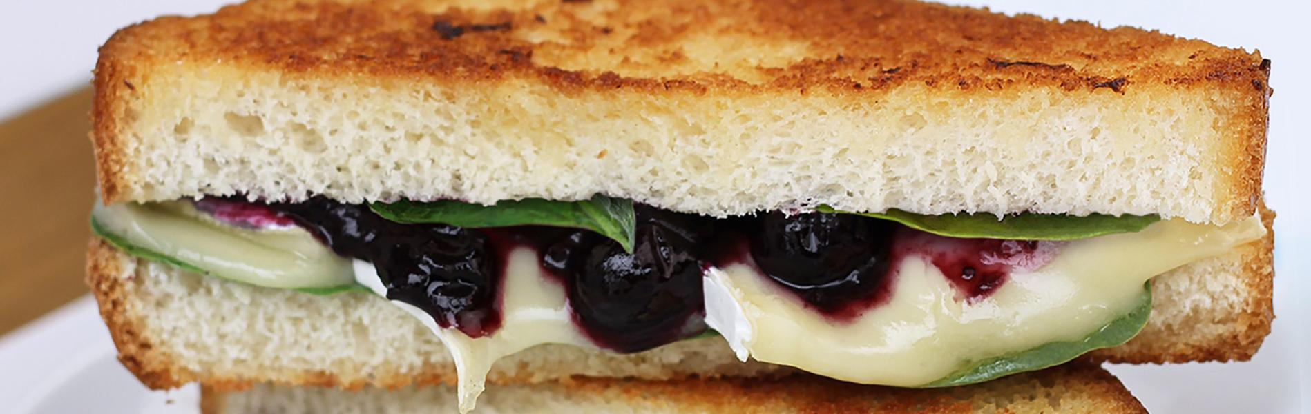 Balsamic Blueberry Brie Grilled Cheese Sandwich