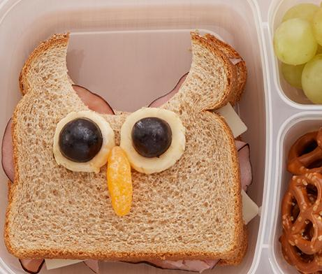 Turkey and Cheese Sandwich shaped like an owl